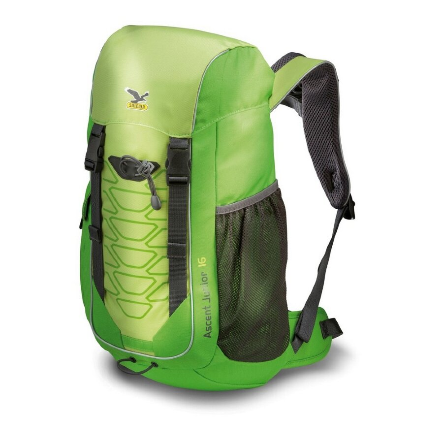 Рюкзак Salewa Ascent Junior 20, 3266/5700 Green 1